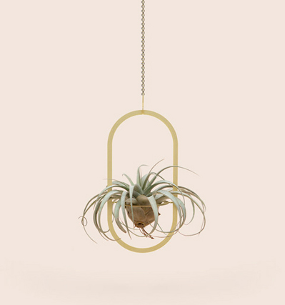 Smallgoodthings Plant Mobile Oval 플랜트모빌