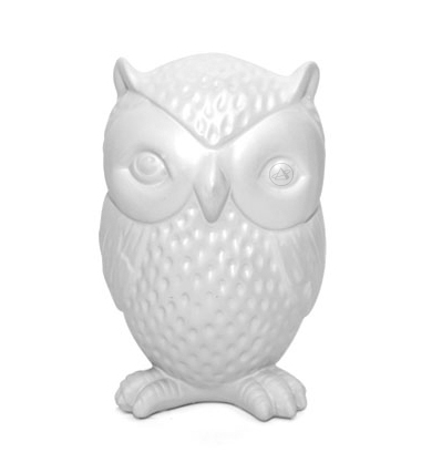 키커랜드 저금통 부엉이 Kikkerland Coin Bank Owl Scratch